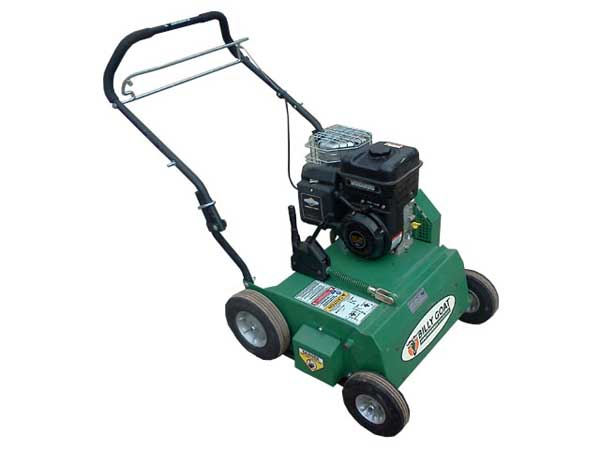 Lawn Thatcher Rental